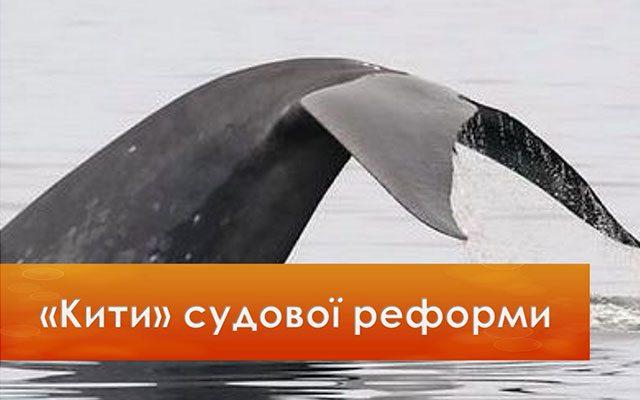 Judicial reform: «Whales» of judicial reform (provided by RPR)